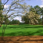 Pinehurst Golf Packages - Pinehurst Number 8 Hole - Ring The Pines Golf Packages